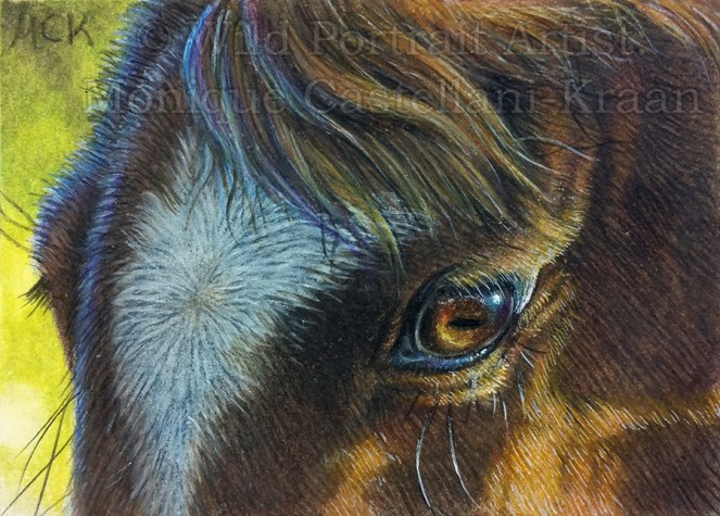 """Gentle Eyes"" - original 2.5 x 3.5 inch miniature ACEO/ATC drawing in coloured pencil, on Strathmore Bristol Vellum. I used a mixture of Touch-up Texture and Titanium White powder for the highlights. Own ref photo used. Art by Wild Portrait Artist. Available for sale."