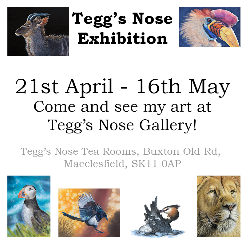 teggs nose advertisement poster2.jpg