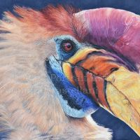 """""""Knobbed Hornbill"""" 30 x 18cm Coloured pencils on Strathmore Brisol Vellum. Reference Photo used with permission from Jan Willemsen. Art by Wild Portrait Artist. Available for sale."""