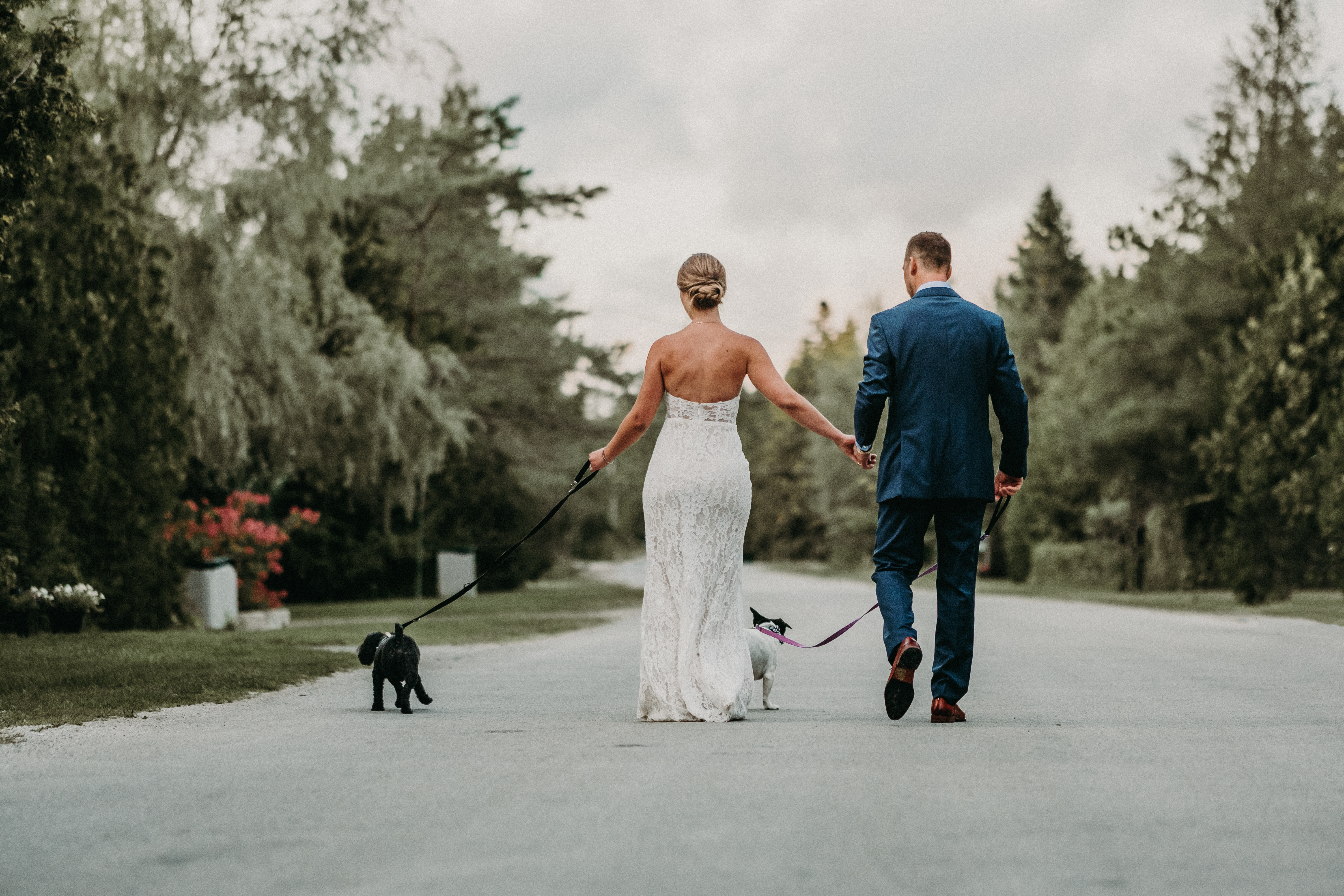 sauble beach backyard wedding ceremony bride and groom vows just married ontario rwalking dogs family of four