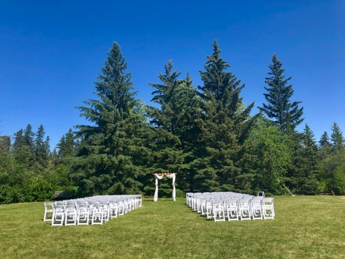 Piercing blue skies surround this intimate outdoor wedding ceremony space, by large pien trees