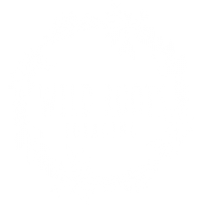 Wild Roots Foraging