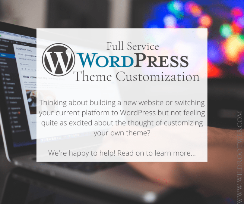 Wordpress Theme Customization Service