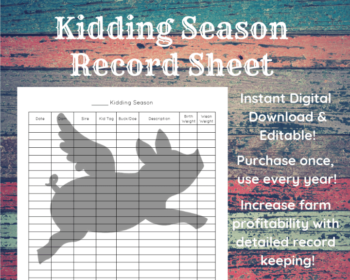 Farm Record Keeping | Digital Download | Flying Pig Cattle Co. | Featured on What I Made Wednesday on WildRoseFarmer.com