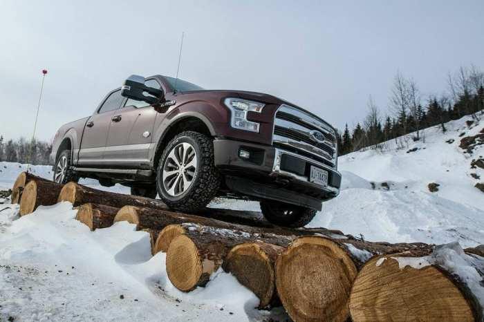 rolling on logs