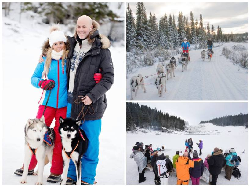 Wild Spirit Sleddog Adventure Wedding's