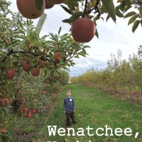 Visiting Wenatchee, Washington with Kids