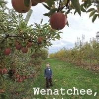 Visiting Wenatchee, Washington with Kids