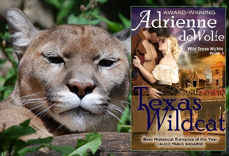 Historical Romance, Western Romance, Victorian Romance, Bandera County, Hell's Half Acre, Nevada, Texas Outlaw, Texas Lover, Texas Wildcat