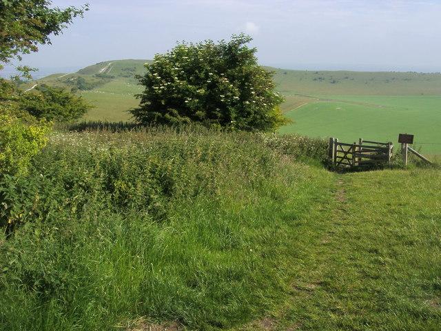 Village Walks in Buckinghamshire