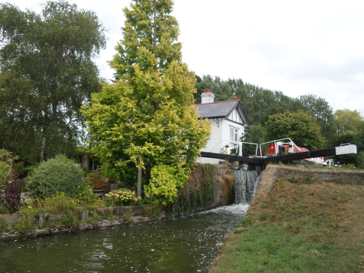Herts Embraced 2.1: Canal walk to Tring Station