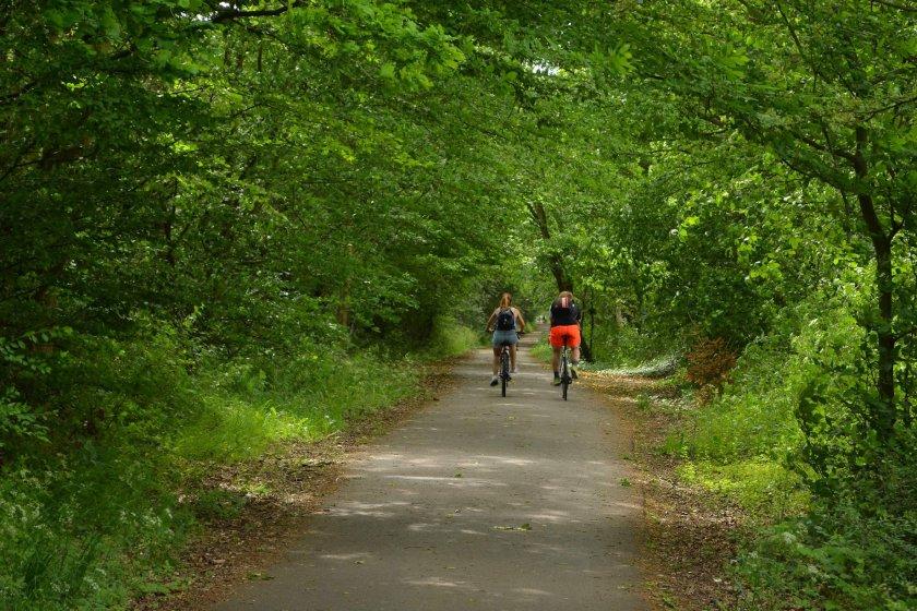 Alban Way cyclists