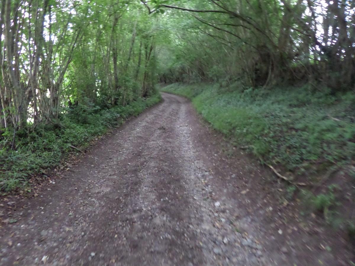 Buckinghamshire Way 2.1 – Forty Green looking north