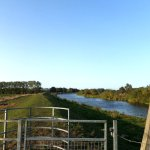 The Cambridgeshire Length 1.4: Fenland rivers to Ely