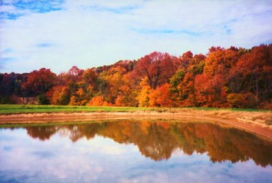 fall pond and woodlands