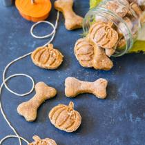 Pumpkin Dog Treats | wildwildwhisk.com