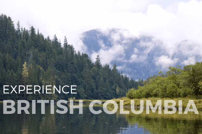 Great Bear Rainforest Kayak Adventure