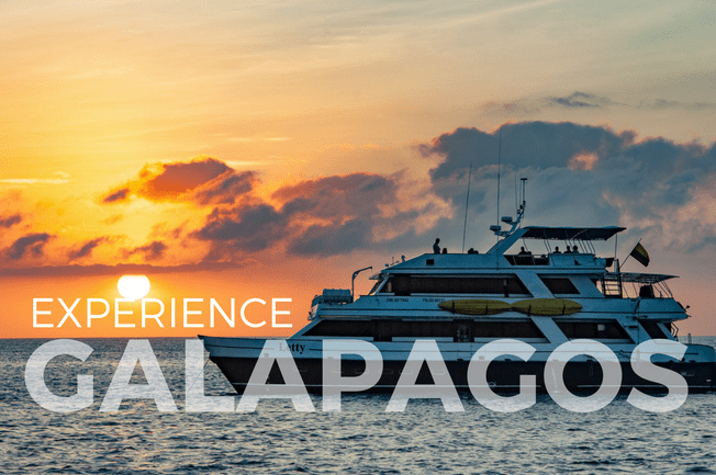 Galápagos Islands Eco-Yacht Adventure