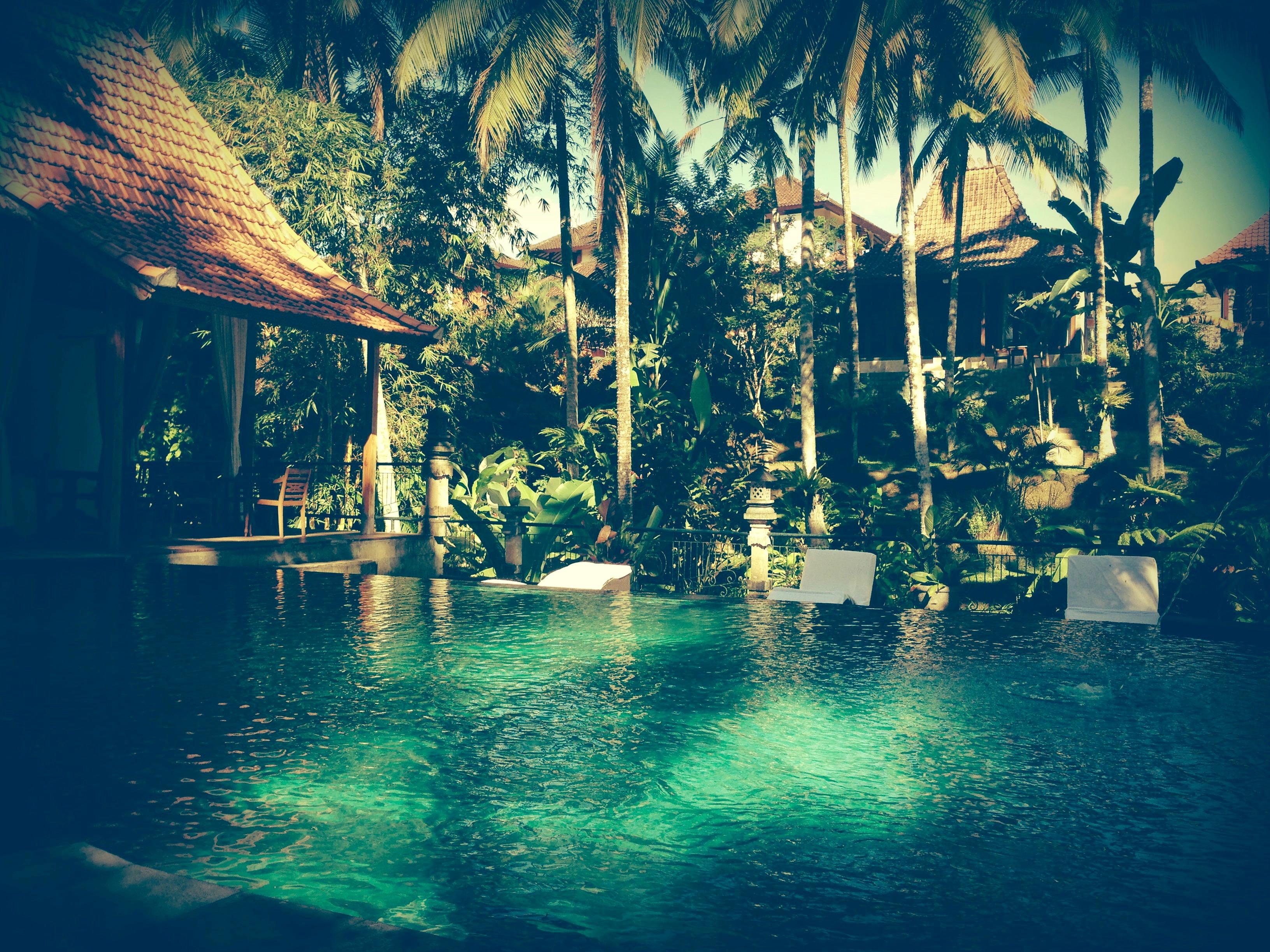 Narosoma swimming pool Ubud (1)