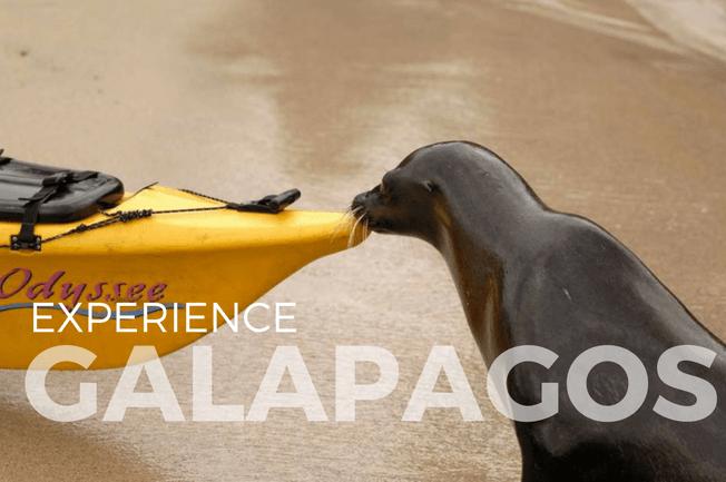 Galápagos Islands Multisport Adventure