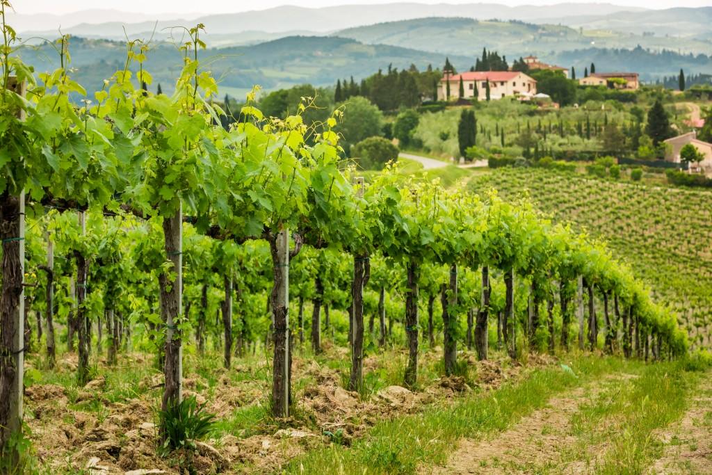day 4 - tuscany