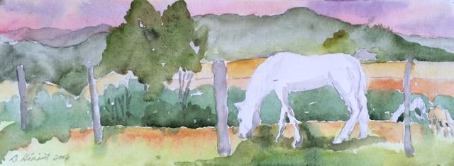 horses grazing watercolour