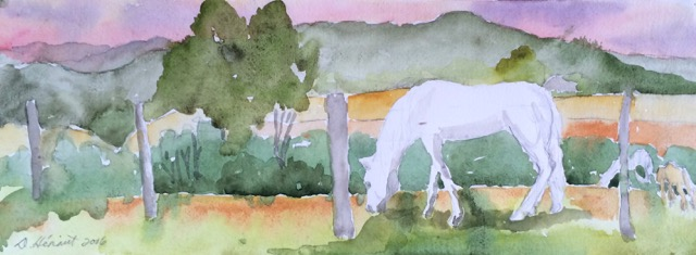 horses grazing watercolour