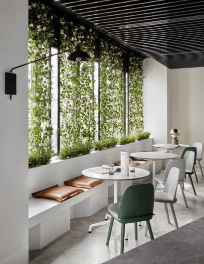A cafe with vertical greenery as a example for biophilia