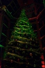 NGC Tree Lighting 2015-4