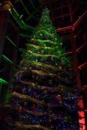 NGC Tree Lighting 2015-6