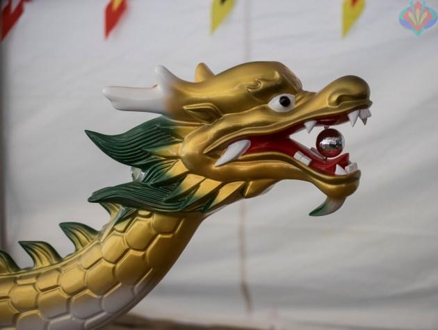 2016 Ottawa Dragon Boat Festival-12