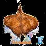 Signe zodiacales des gémeaux