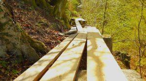 Holzbretter auf alten Brückenpfeilern im Wand neben dem Parkplatz des Waldheims Hedelfingen