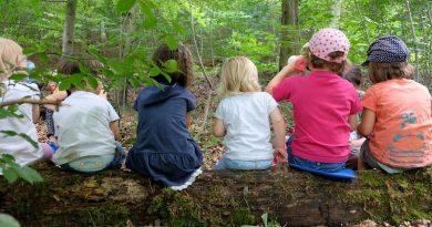 Kinder sitzen auf einem Baumstamm