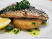 Grilled Mackerel, served with a huge slice of Crumbed Celeriac