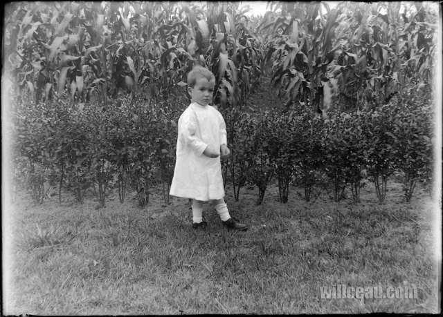 child-of-the-corn