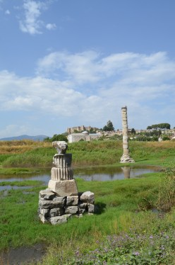 All that remains of the Temple of Artemis (which is some 2-3 km from Ephesus). It is now a swampy field. Behind is the fortress of Selcuk and the basilica of St John. In its day it was the largest Temple in the Mediterranean. It was sacked by the Goths in the 4th century and wasn't rebuilt. Until that time it was in conflict with the Christian faith