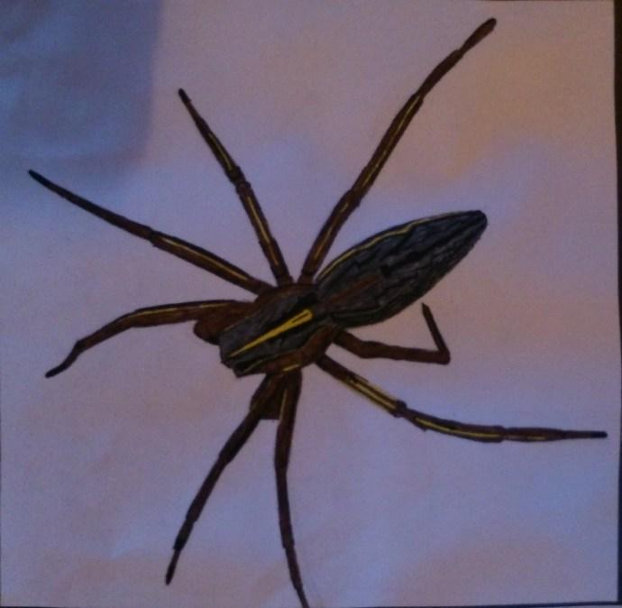 Fine liner spider