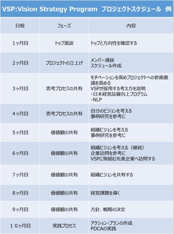 VSP スケジュール 例