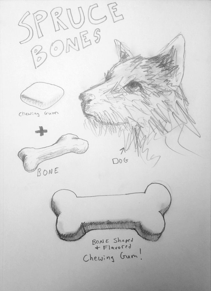 Spruce Bones Humor Drawing Will Eskridge
