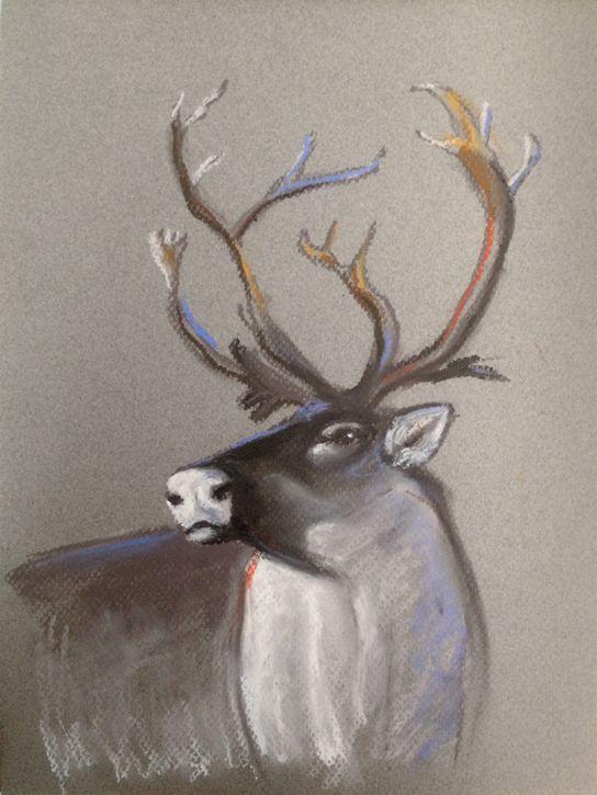 Caribou Animal Artist Art Will Eskridge
