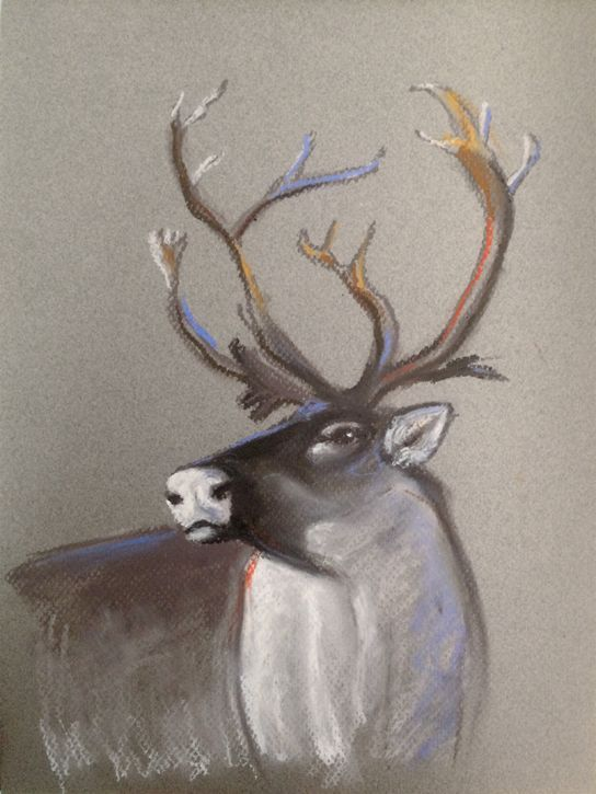 Caribou Animal Artist Art Will Eskridge