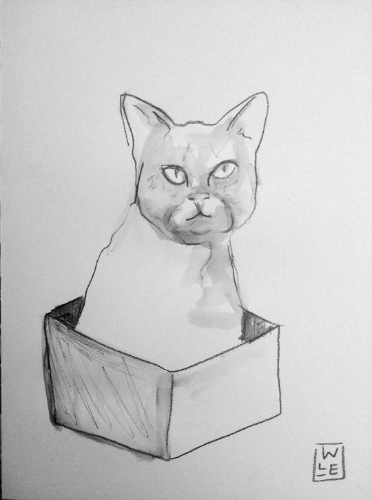 Cat In A Box Animal Artist Art Will Eskridge