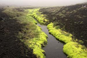 IJsland 11