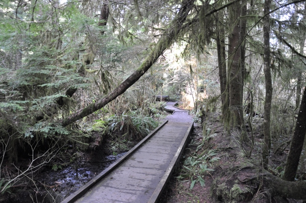 Image result for watershed park olympia wa