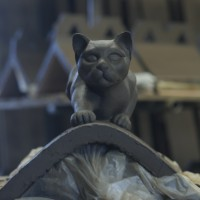 Heritage Project Cat Front View