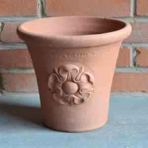 Small Flowerpot with Tudor Rose