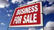 Profitable Businesses for Sale by William Bruce