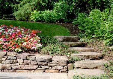 steps stone 2