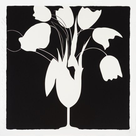 sultan_white_tulips_and_vase__feb_25